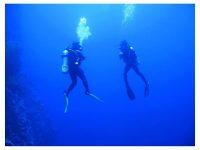 ראס מוחמד ומיצרי טיראן - 4 ימי צלילה - 29 במרץ עד 2 באפריל ****** פסח ******
