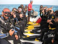 טיראן וראס מוחמד - 3 ימי צלילה - 1-4 בנובמבר