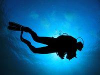 ראס מוחמד ומיצרי טיראן – 4 ימי צלילה – 16-20 באוגוסט